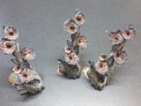 Boomstronk met bloem