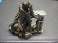 Ruine met boom